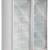 Exhibidora vertical baja temperatura 2 puertas de vidrio o ciegas